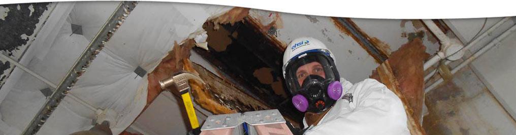 hazardous materials services